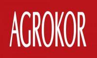 Agrokor postaje hrvatski Alibaba