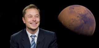 Svaka kuća morat će postati elektrana, kaže Elon Musk